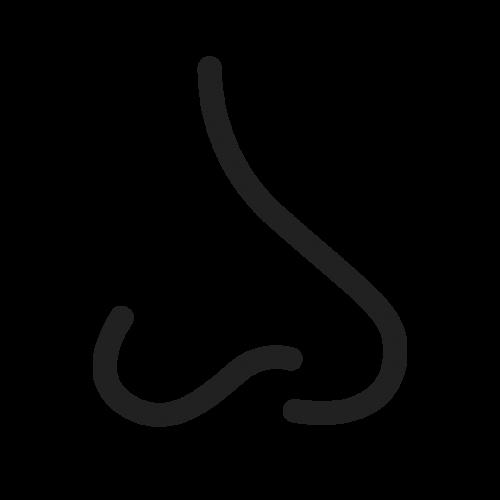 Icon Nase